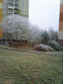 photo6687