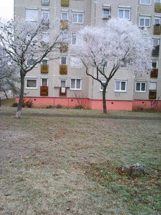 photo6713
