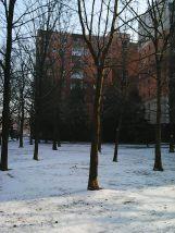 photo6770
