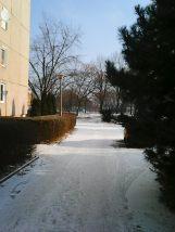photo6790