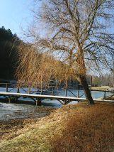 photo6879