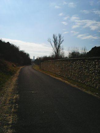Photo7058