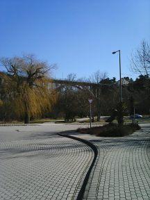 Photo7259