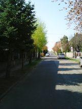 Photo7894