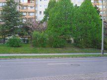 Photo8111