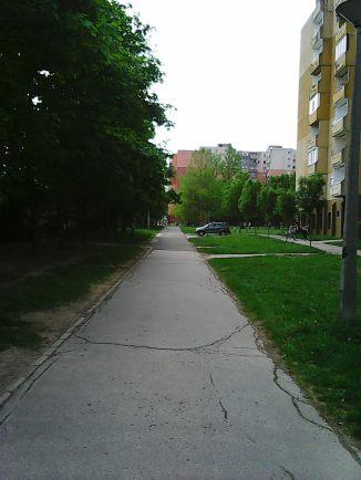 Photo8373
