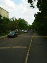 Photo8568