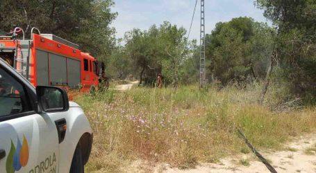 Un cable de tendido eléctrico cae en La Vallesa y moviliza a policía local, bomberos y brigadas forestales de Paterna