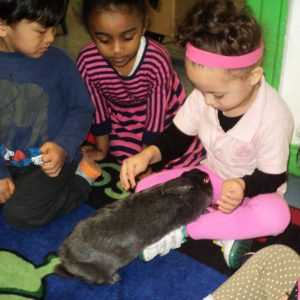 pre-k children with rabbit