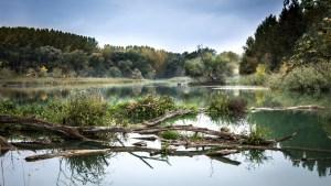 river, danube, reflection