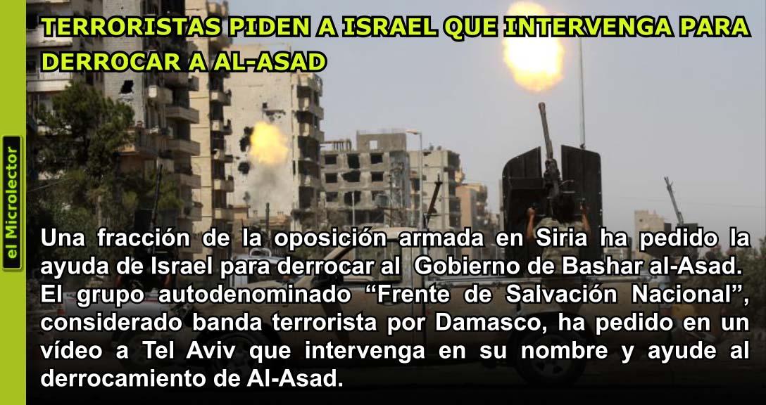 TERRORISTAS PIDEN A ISRAEL QUE INTERVENGA PARA DERROCAR A AL-ASAD