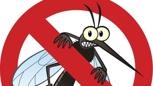 Pican pican los mosquitos 3