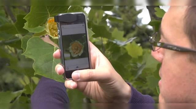 app plantas 2