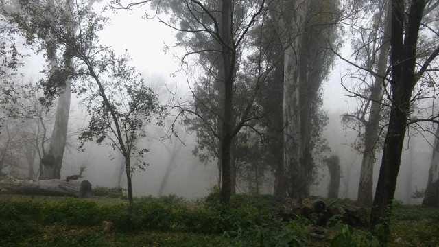 LA FOTO DEL DÍA: un manto de neblina en Villa Leonor 1