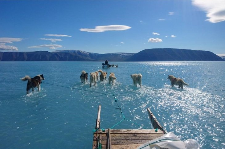 LA FOTO DEL DÍA: retrato del deshielo en Groenlandia 8