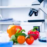 Córdoba recibe al «VIII Congreso Internacional de Ciencia y Tecnología de los Alimentos»
