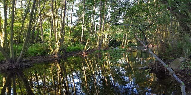 Cascada hervidero río