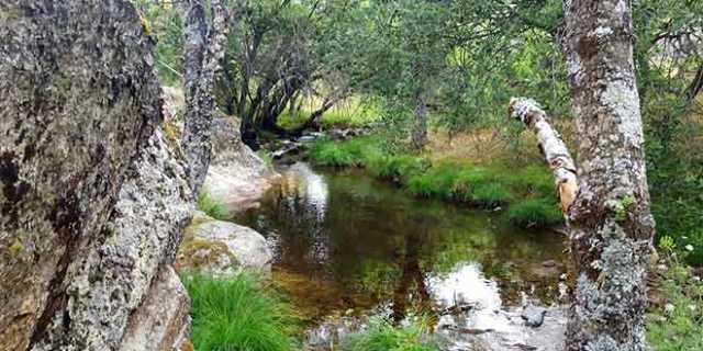 Río Cambrones ruta