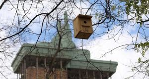 Cajas nido Castellana