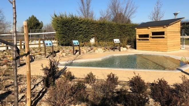 arboreto parque lineal manzanares y sendas botánicas