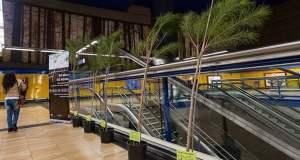 Árboles Metro de Madrid