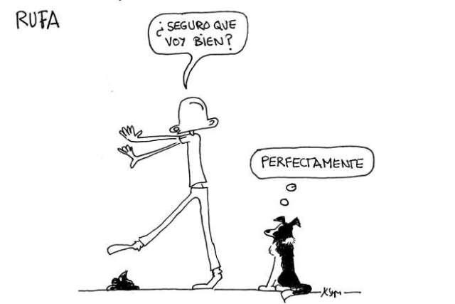 perro guía