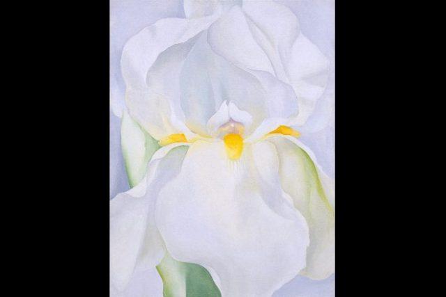 Exposición Georgia O'Keeffe thyssen