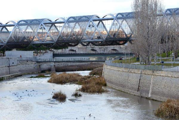 Río Manzares repoblación de especies