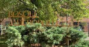 exposición bosque metropolitano
