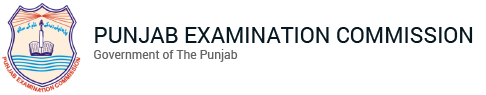 8th Class 2020 Gazette All Districts of Punjab