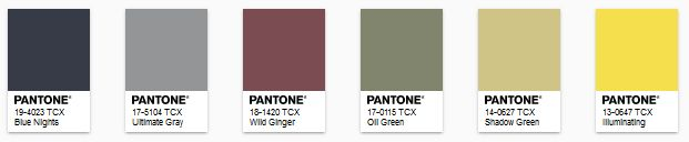 PANTONE - color of the year 2021 - Paleta Sun and Shadow