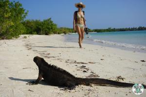 Foto de chica en la playa e iguana de galápagos