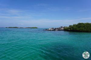 Foto de Bahía de Puerto Villamil (Isabela)