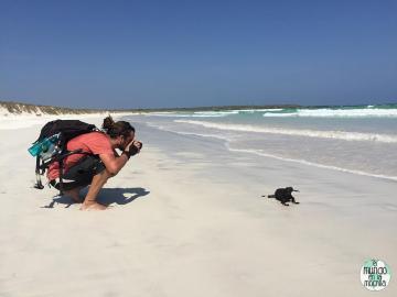 Peter fotografiando iguanas elmundoenlamochila.com