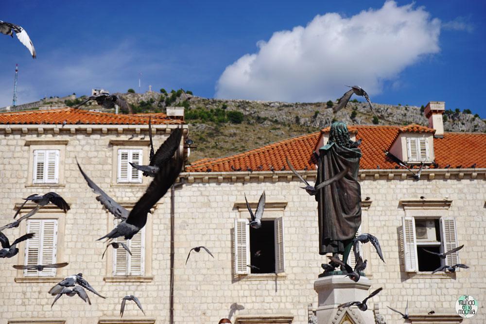 Palomas volando en el mercado Gunduliceva Poljana en Dubrovnik