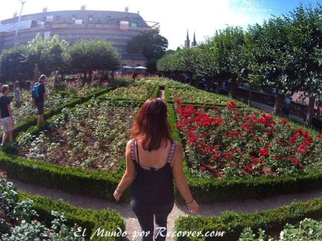 Jardín de rosas en la Nueva Residencia