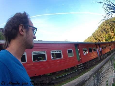 Viendo el tren pasar en el 9 Arches-Bridge Ella Sri lanka
