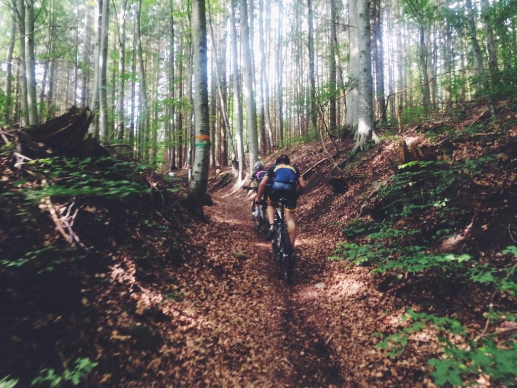 Cykla på Omberg