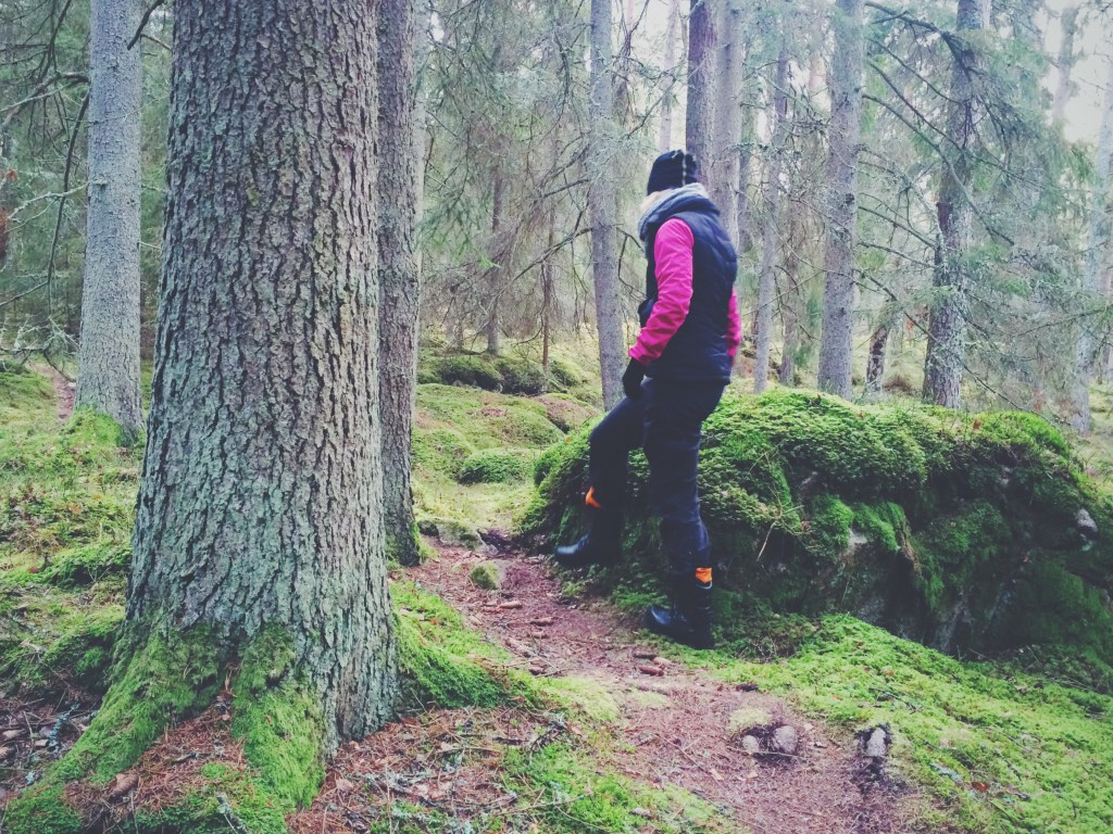 Mindfullness i mossig skog