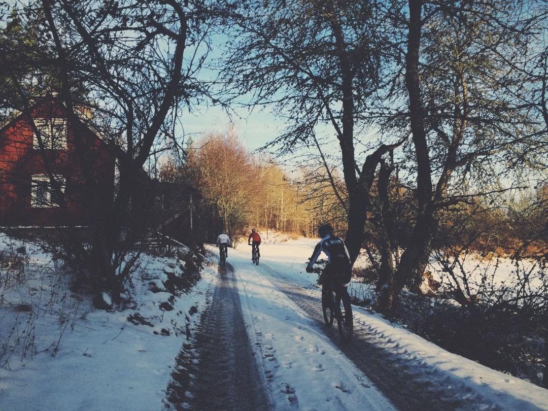 Skogsväg Kvarnsjön