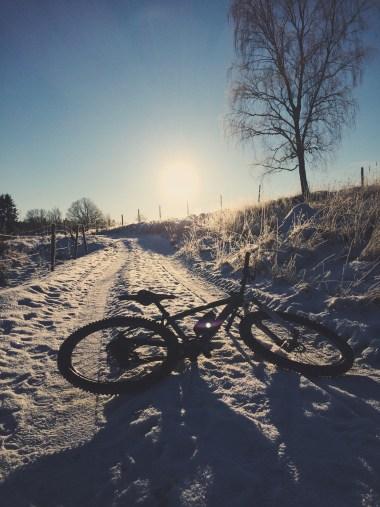 Cykellycka om vintern
