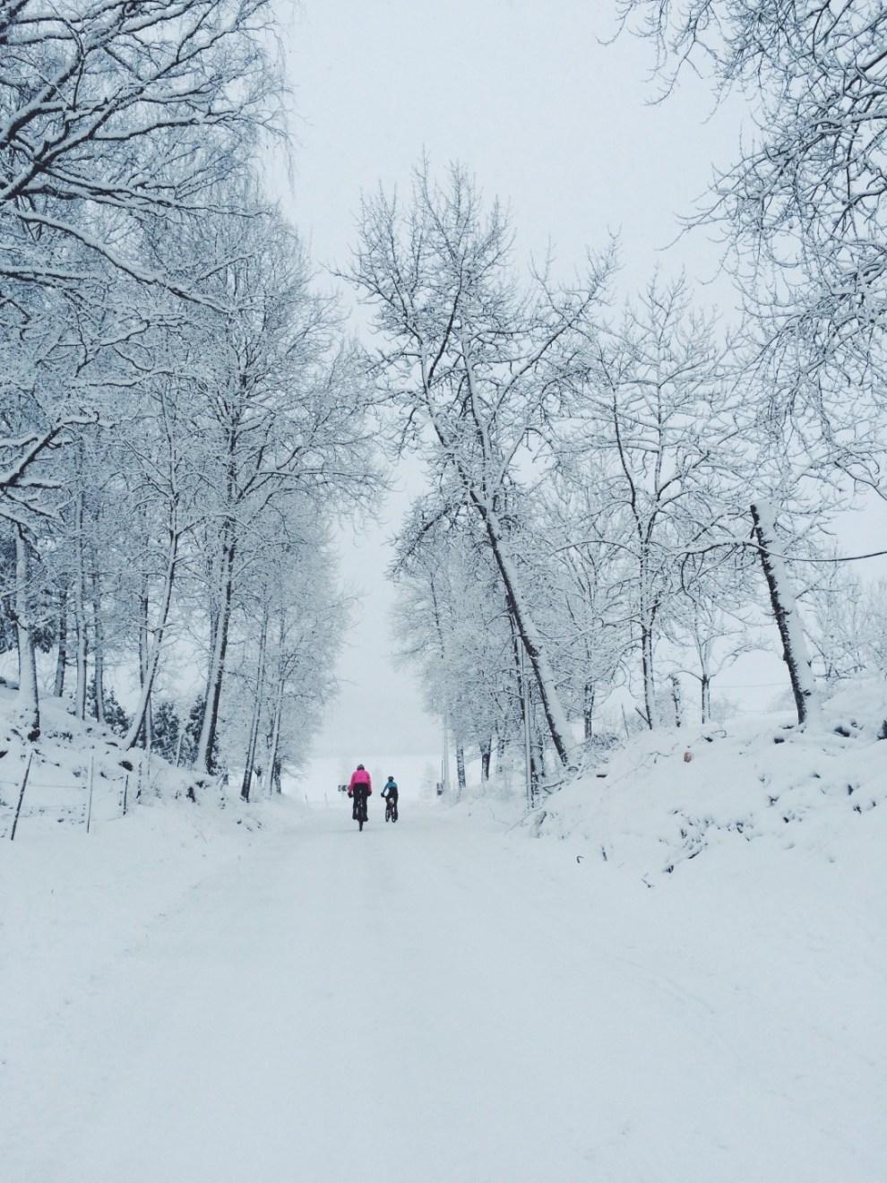 Vintercykla