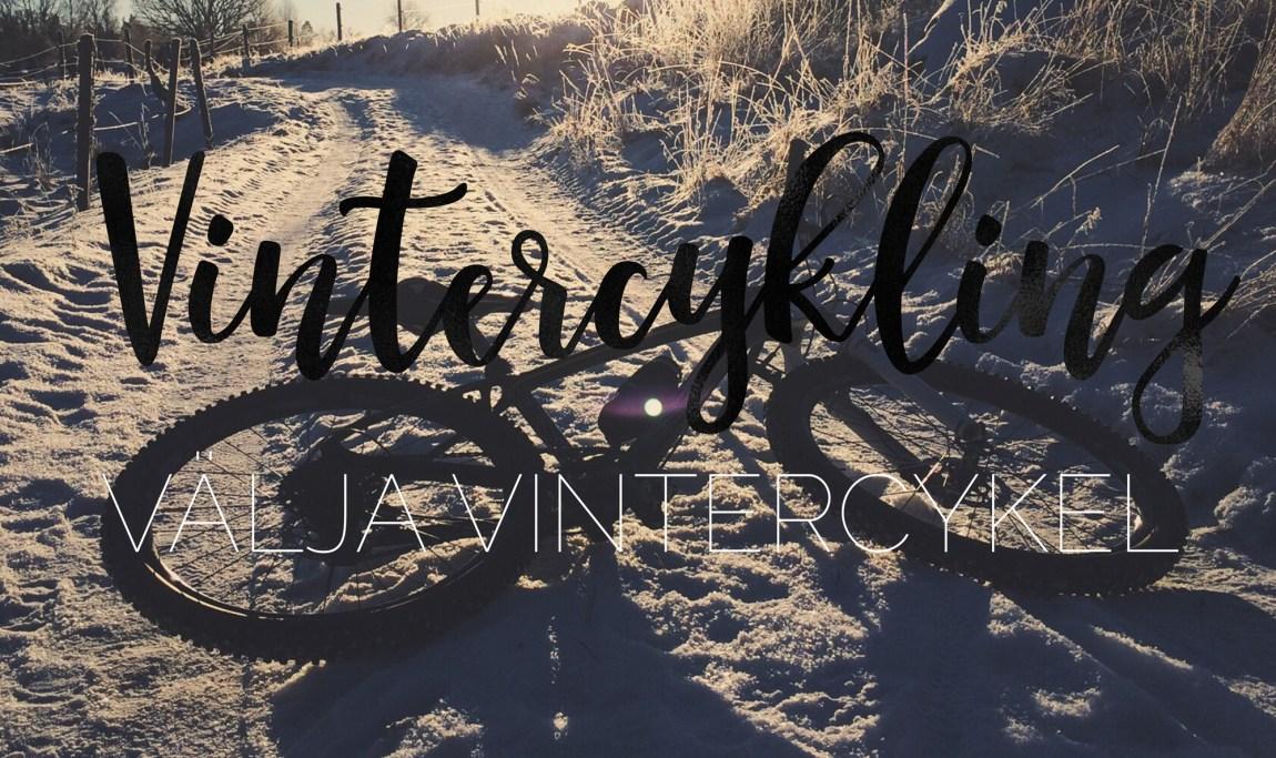 Välja vintercykel