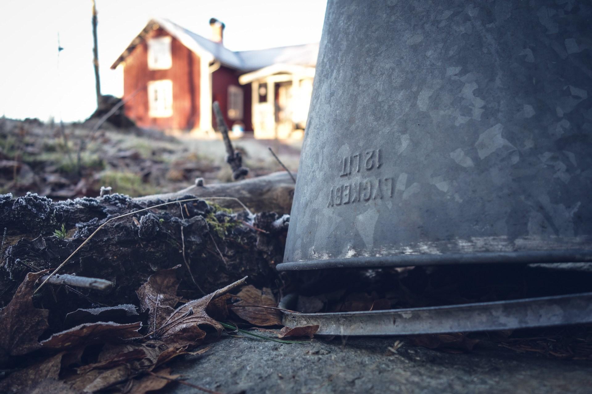 Decemberförmiddag på Kvarnskogen