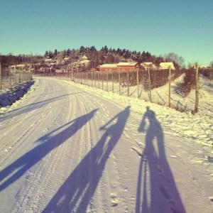 Vinterdistans utan kalla fötter