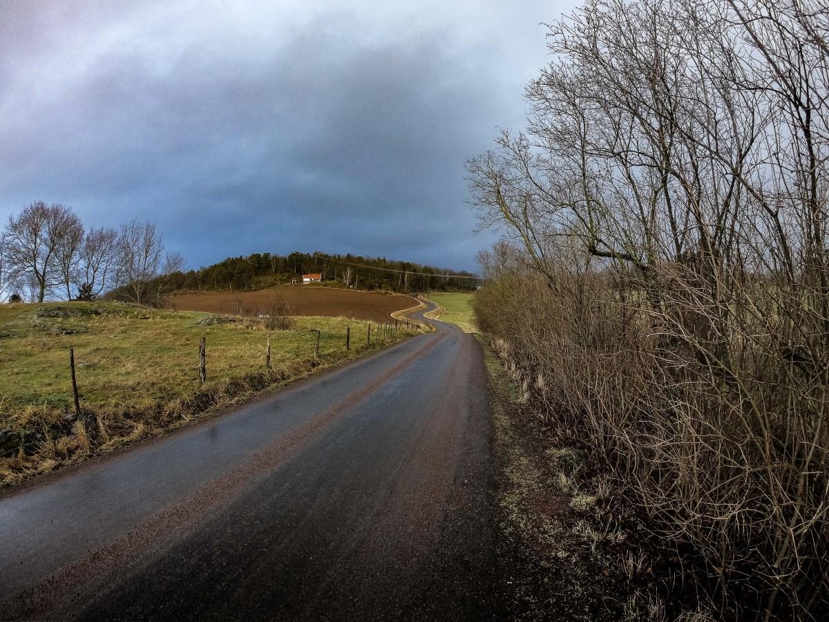 gråbrun cykellycka i Jönköpings Toscana
