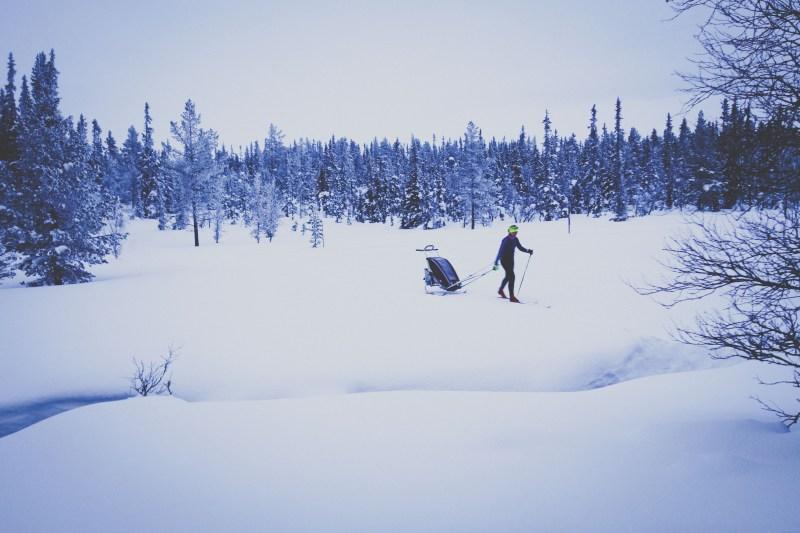 Skidor med chariot i Grövelsjön