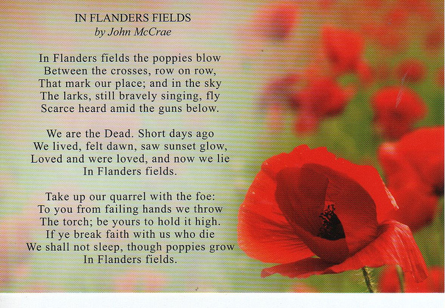 flanders-poppy-fields-poem-i10