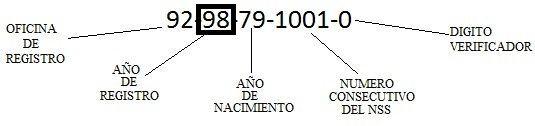 NUMERO DE SEGURO SOCIAL