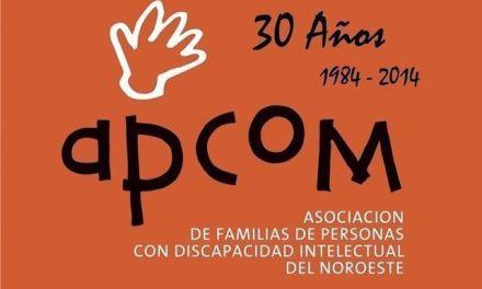 30  años: 1984 – 2014  Apcom